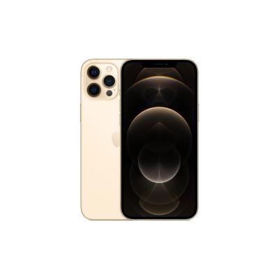 Телефон Apple iPhone 12 Pro Max 256Gb (Gold)